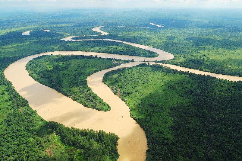 Vista aerea del fiume Kinabatangan in Sabah, Borneo, Malesia