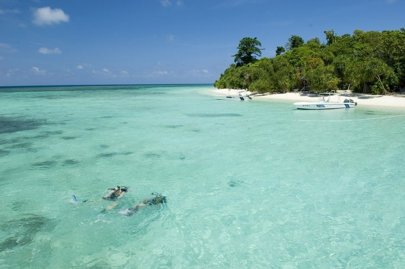 Immersioni subacquee a Lankayan Island in Malesia