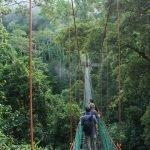 Danum Valley, Borneo