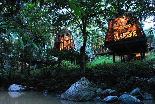 Lodges nella Foresta del Borneo a Tabin
