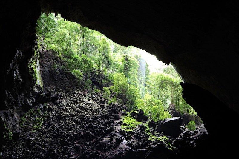 Ingresso del Garden of Eden, Parco Nazionale di Mulu, Sarawak, Borneo, Malesia