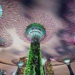 Le migliori città asiatiche per celebrare il capodanno 2015