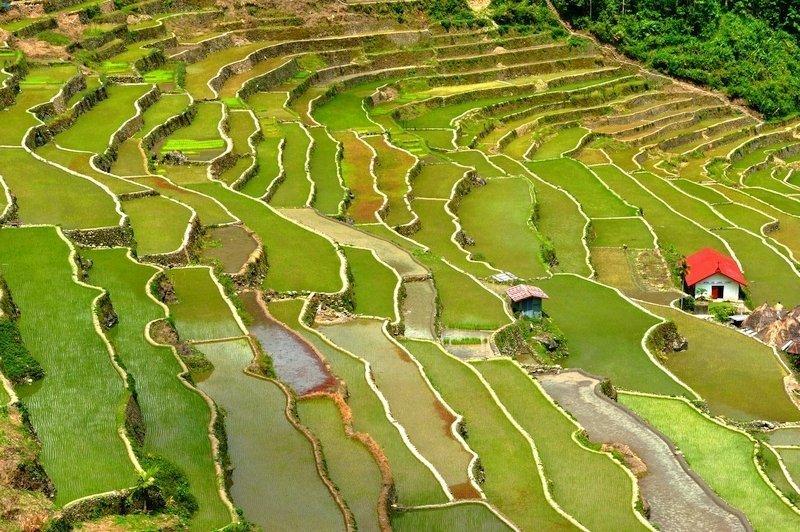Le terrazze di riso di Banaue sono una destinazioni più belle delle Filippine