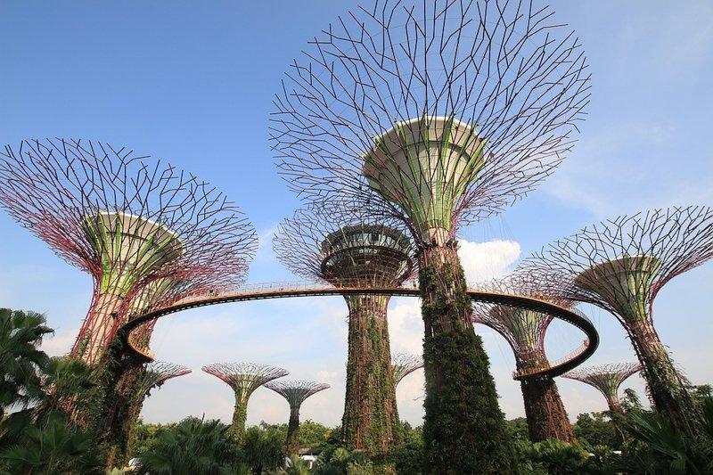 Gli Alberi Artificiali di Singapore
