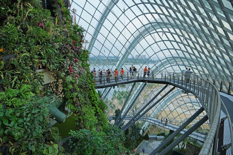 garden-by-the-bay-singapore