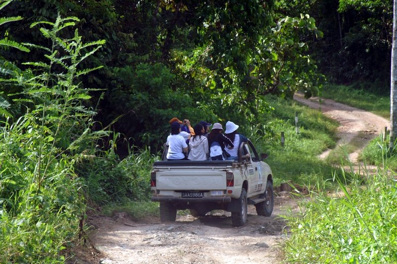 Turisti nella riserva di Tabin