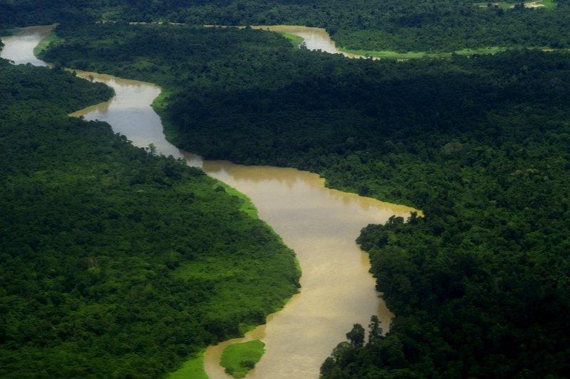 Vista aerea del Parco Nazionale di Mulu, Sarawak, Borneo, Malesia