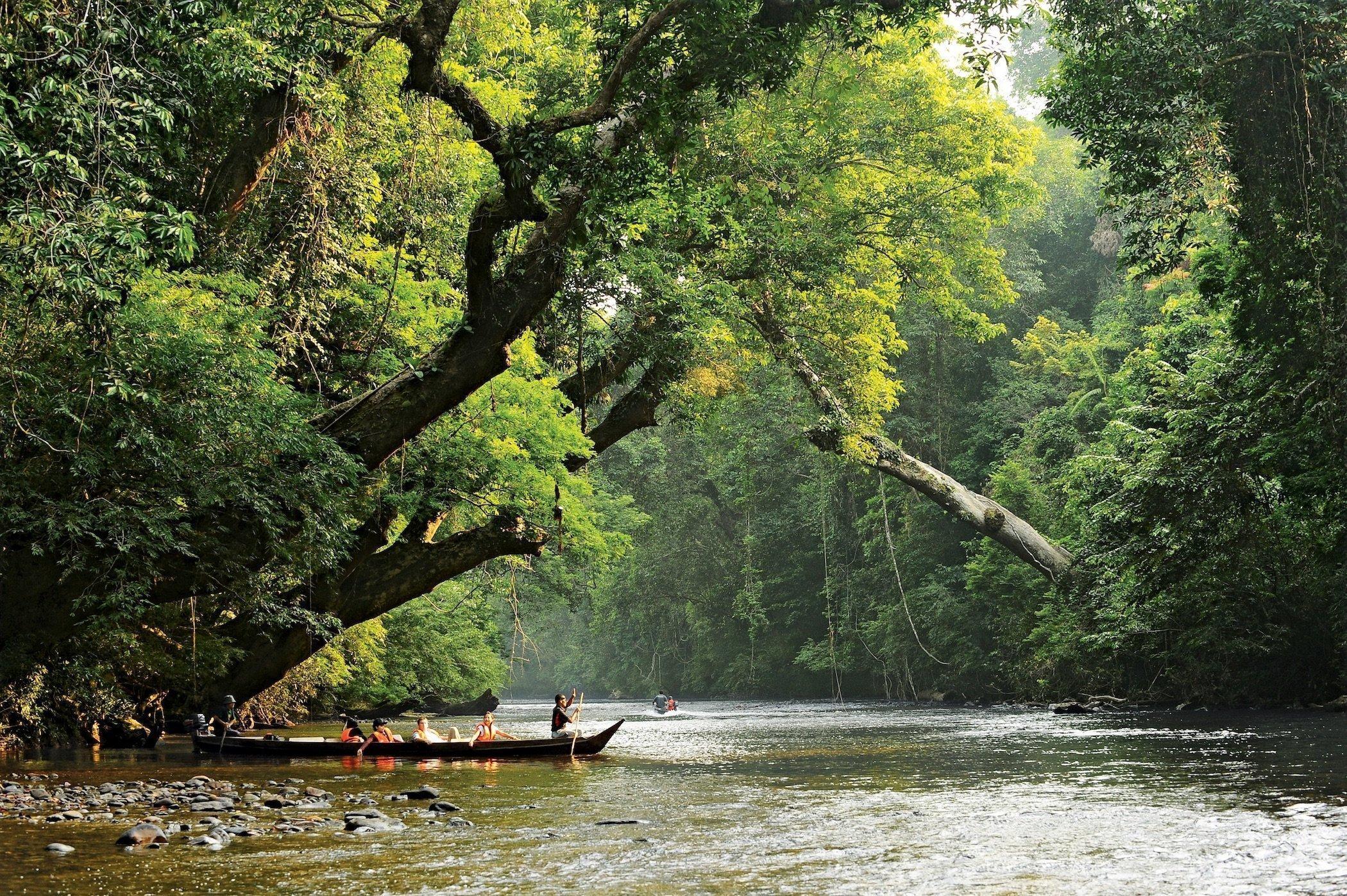 Turisti in barca nella foresta pluviale di Taman Negara, Malesia
